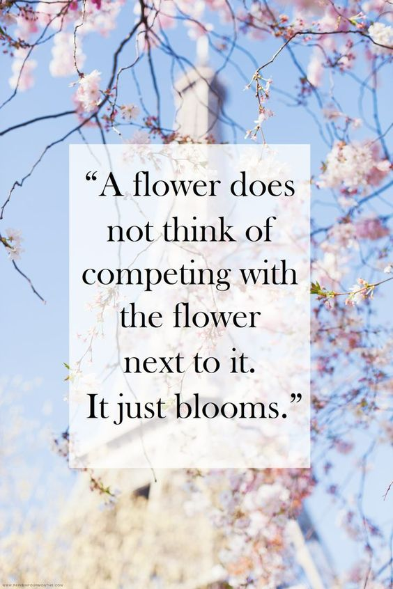 do not compete with others life wisdom quotes