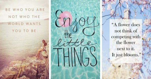 22 quotes to summarize the wisdom about life