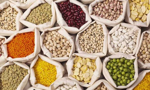 Pulses #healthy living #belly fat #foods #trendypins