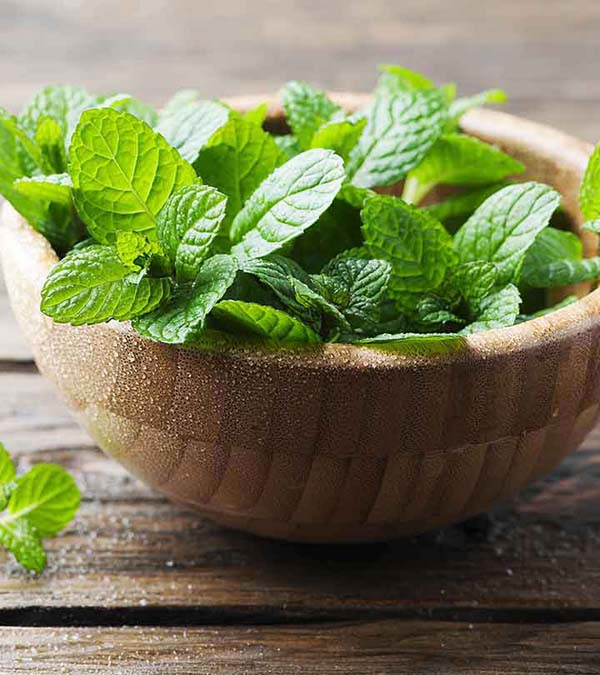 Crushed Mint Leaves To Get Rid Of Dark Circles Under Eyes #dark circles under eyes #beauty #trendypins