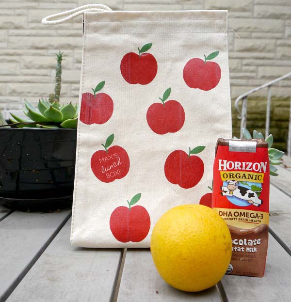 DIY Reusable Lunch Bag #DIY #Christmas #gifts #trendypins