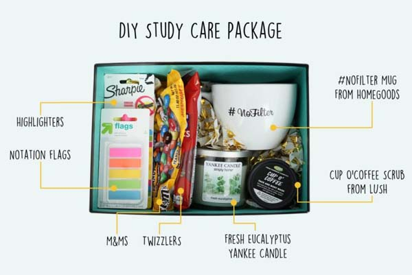 Study Care Package #DIY #Christmas #gifts #trendypins